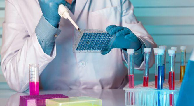 農生醫全都包 探究生物演化與應用