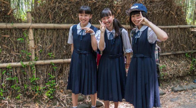 日本小學用托福兒少系列 測驗為學習把關