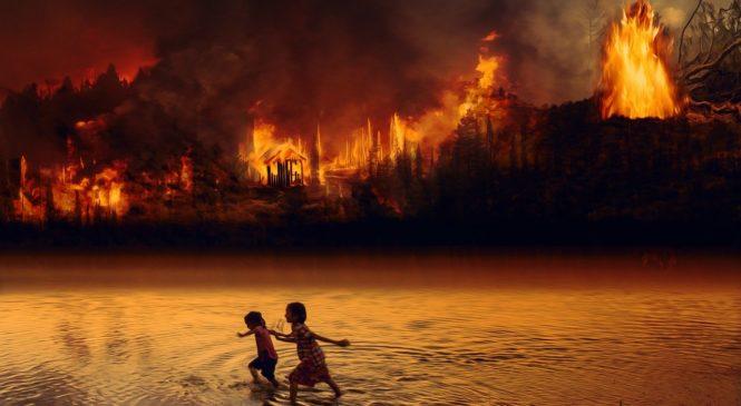 2019年生態浩劫:亞馬遜雨林野火 關注國際新聞學多益關鍵字