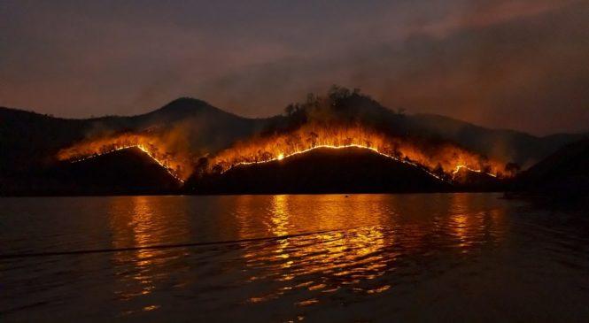 跨學科學英文/森林大火頻傳 相關單字怎麼說