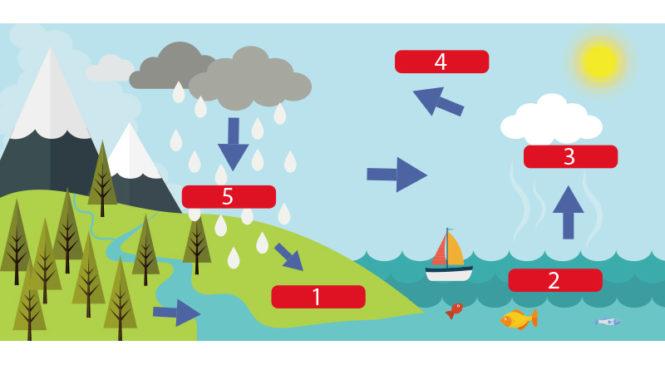 水循環是什麼?